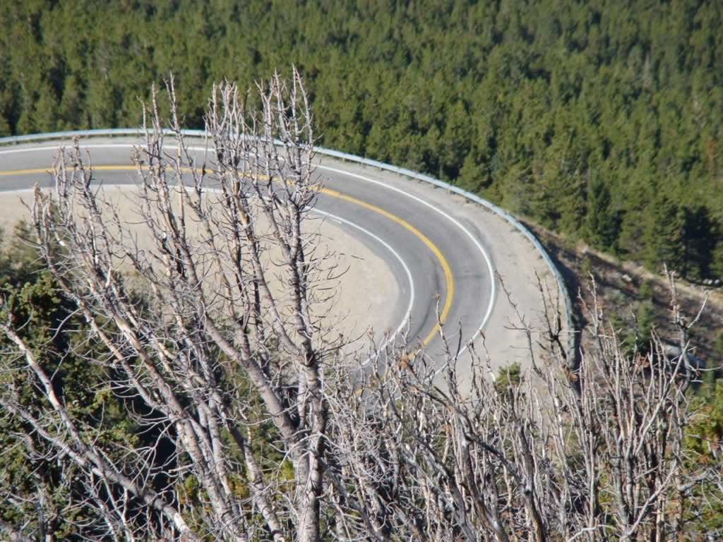 Switchbacks on the Beartooth Highway
