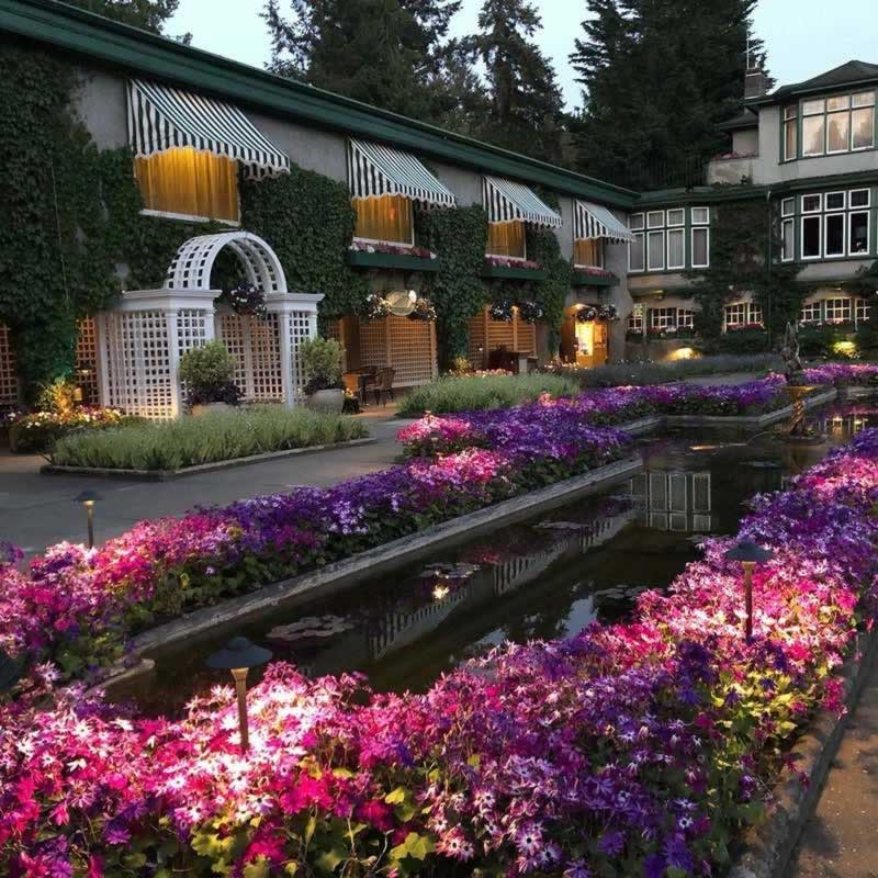 Nighttime scene in the Italian Garden at Butchart Gardens in British Columbia